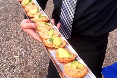 Elegant appetizers and sophisticated service by Casa Nova Custom Catering, Santa Fe, NM
